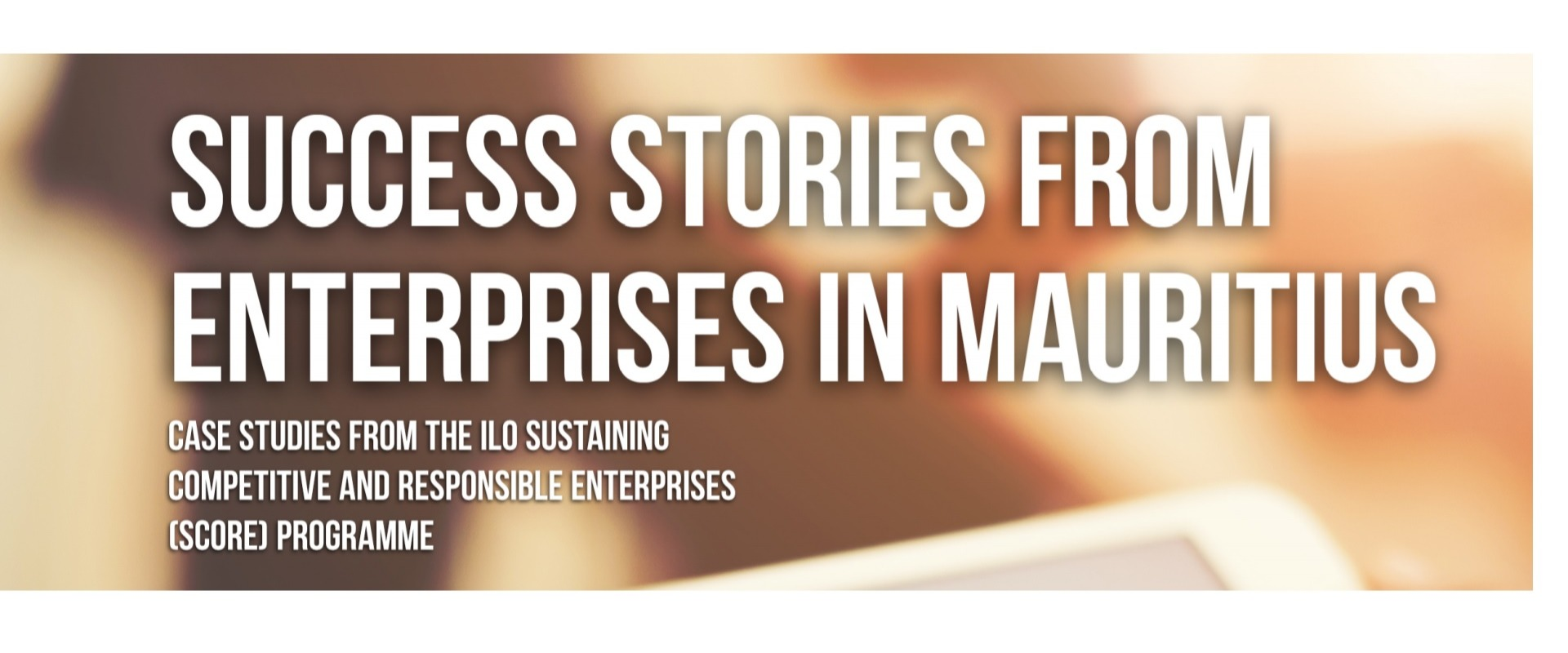 Success stories from enterprises in Mauritius